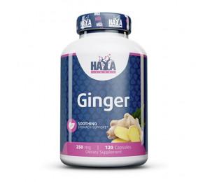 Haya Labs Ginger 250mg 120caps